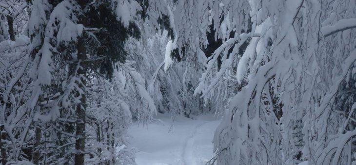 12 décembre: première «hivernale»