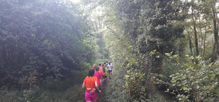 Les premières séances Trail